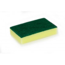 Foam Backed Scourer x 10